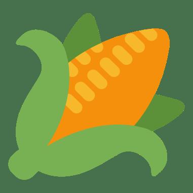 sweetcorn-maize