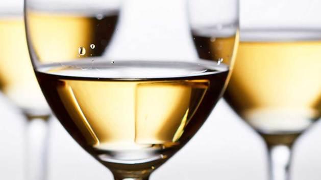 Risultati immagini per degustazione vino bianco