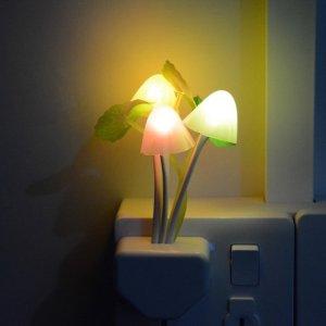 plant nachtlampje