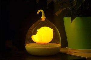 vogel nachtlampje