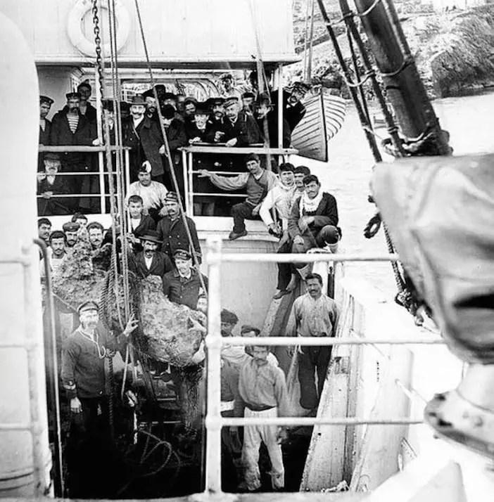 1901-divers