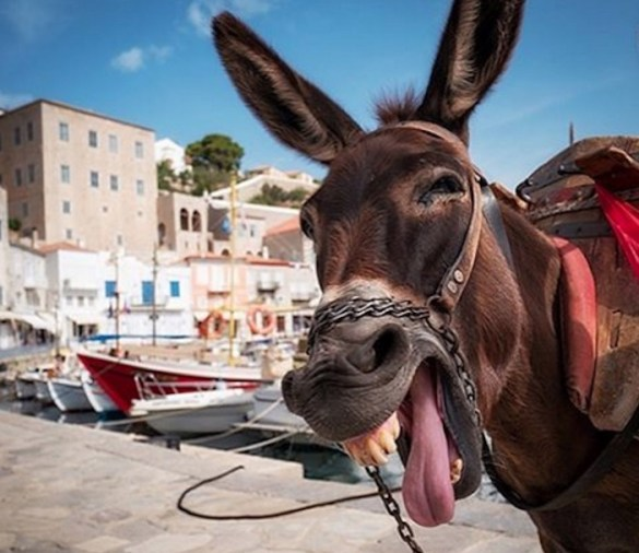 72 Perfect Hours in… Hydra