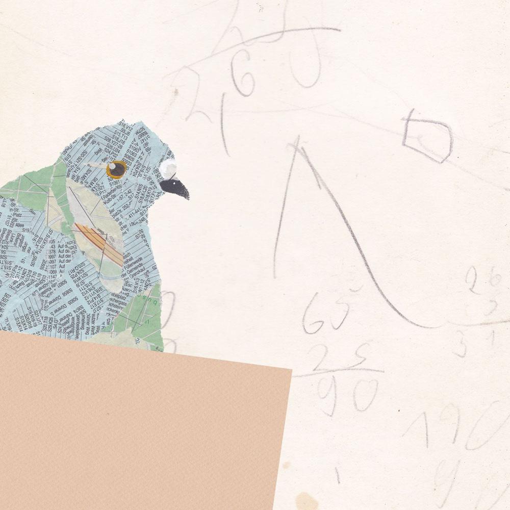 Taube-Recyclingpapier-Vogelillustration