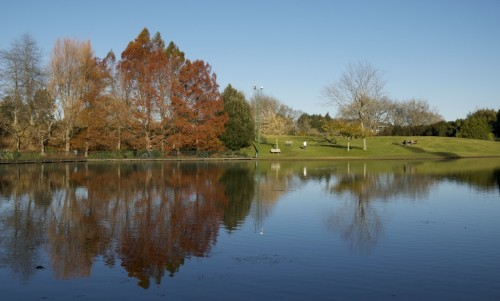 hamilton-lake