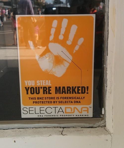 selecta-school