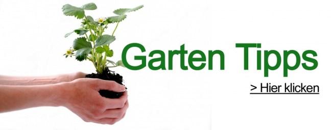 garten-tipps