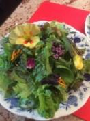 Salat mit Orangen Senf Dressing