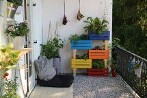 Gemüse auf Balkon anbauen