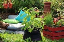 Auf kleinem Raum gärtnern