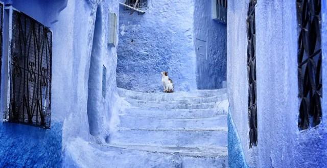 De blauwe stad van Marokko   Overnachten