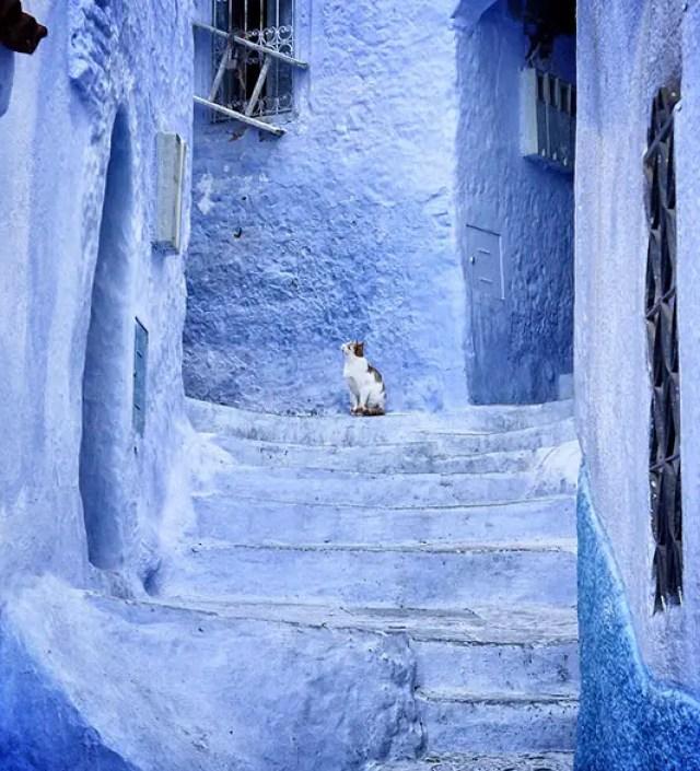 De blauwe stad van Marokko | Overnachten