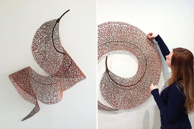 meredith woolnough2