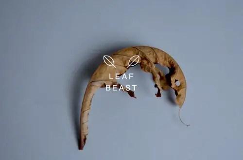 leafbeast4