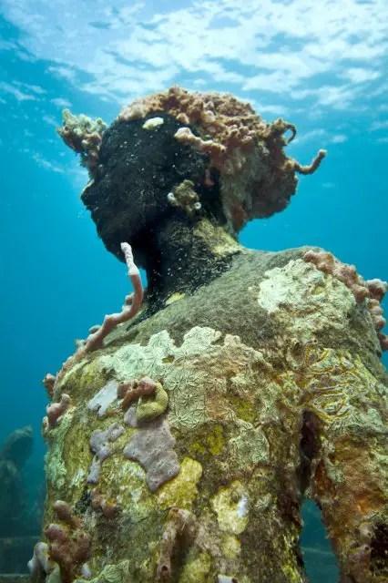Onderwaterbeelden 13