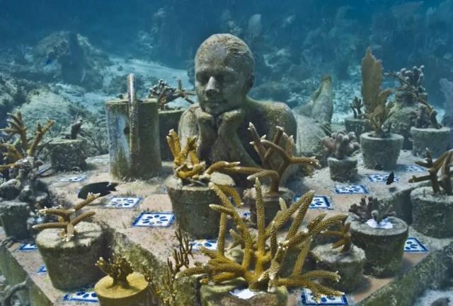 Onderwaterbeelden 18