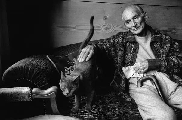 kunstenaars en katten15