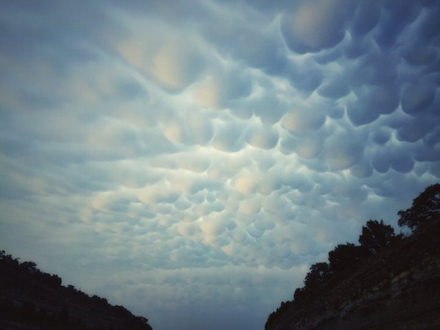 Zeldzame wolken   Paradijsvogels Magazine