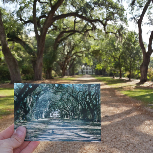 Rosedown Plantation in St. Francisville, Louisiana