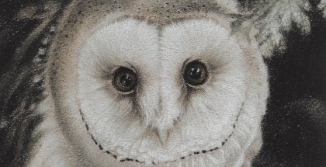 Het Uilendagboek   Een uilenbegroeting