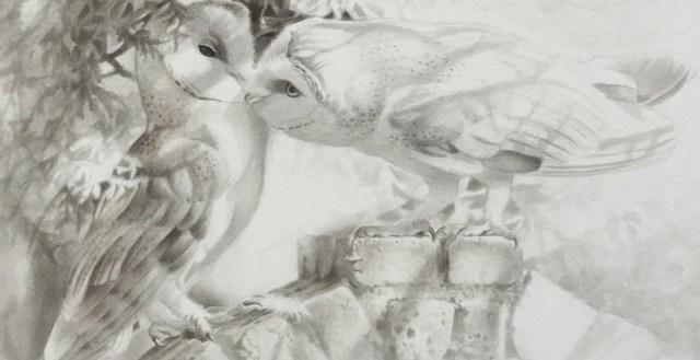 Het Uilendagboek | De enige uil die genegenheid kan tonen