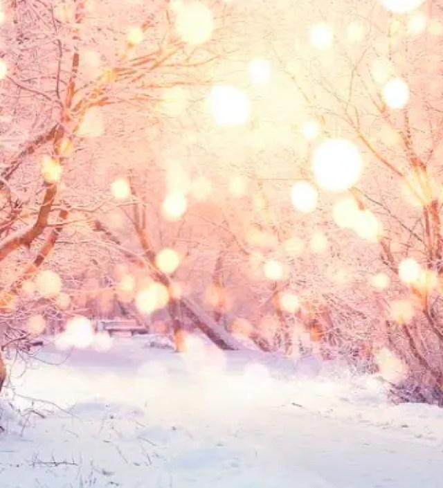 Door deze foto's hoop je dat het deze winter heel hard gaat vriezen en sneeuwen