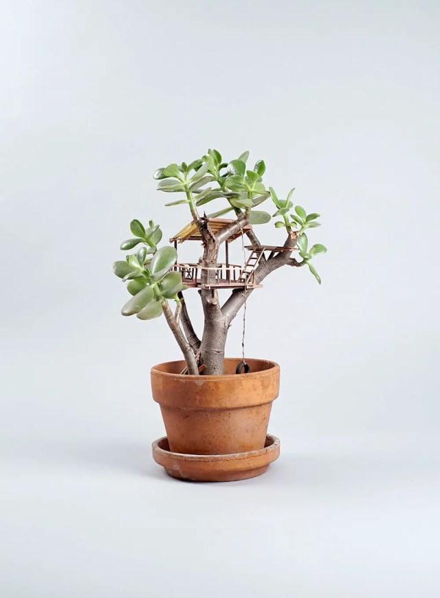 boomhutten miniatuur