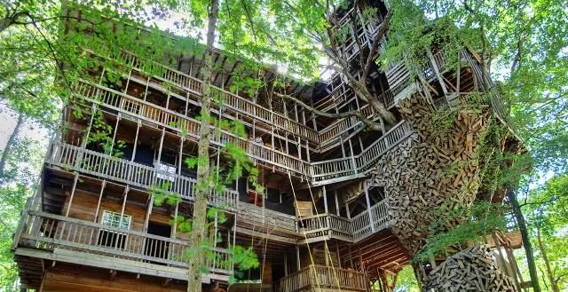 Met 10 verdiepingen is dit de grootste boomhut ter wereld