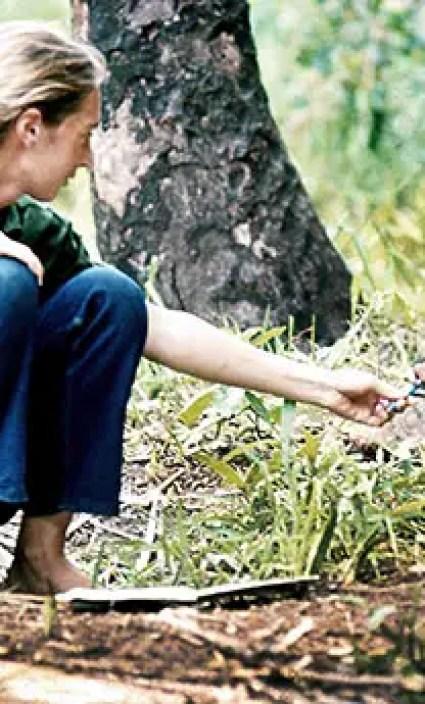 10 inspirerende gedachtes van Jane Goodall
