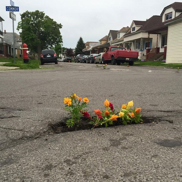 planting-flowers-in-potholes-2