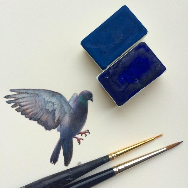 Miniature birds 9