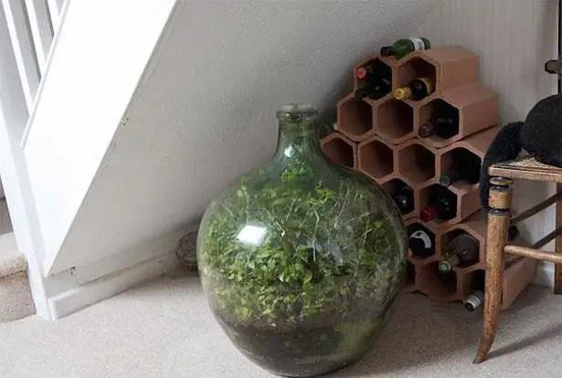 Bottled garden 3