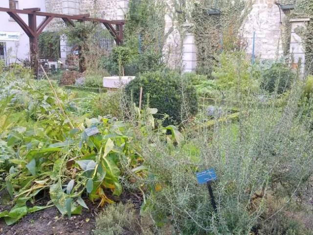 Geheime tuinen 6 - Abbesses