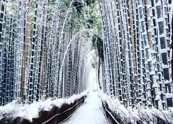Kyoto in de sneeuw - 2