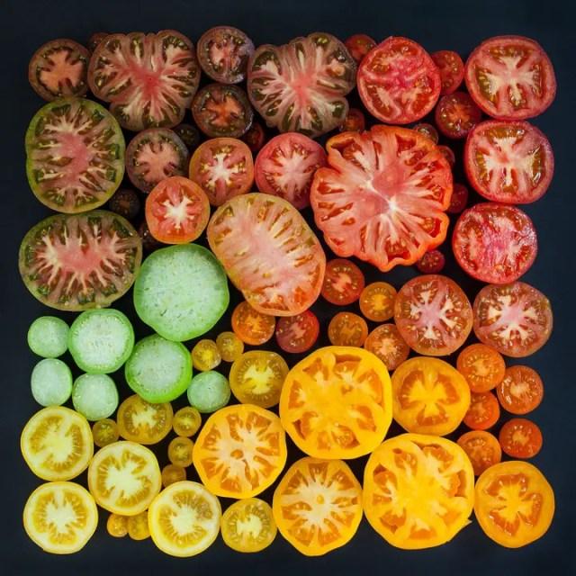 Tomato-Season-Cross-Section-Colours-by-Emily-Blancoe