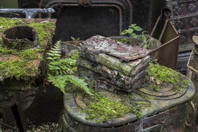 jonk-urban-exploring-natuur-verlaten-plekken-6