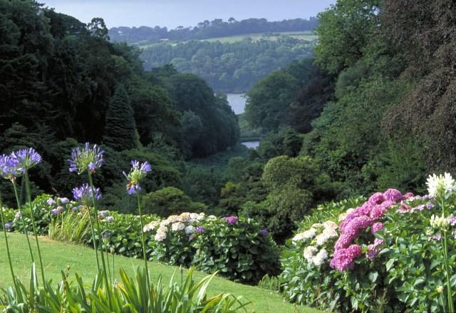 Trebah Garden ......