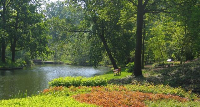 botanische tuin mooi nederland