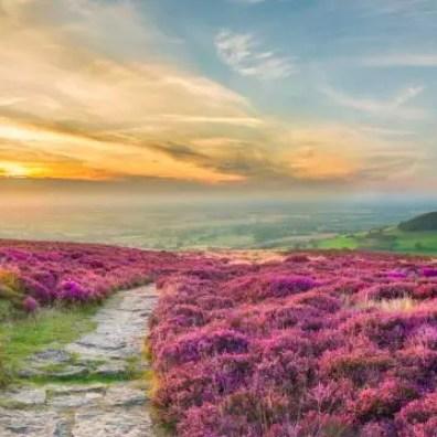Alsof je wandelt in een ansichtkaart: zó mooi is Zuid-Engeland