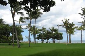 beach_garden