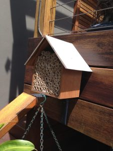 Native & solitary bee hives