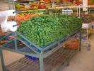 Supermarkt6.jpg