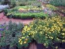 Blumencenter1.jpg
