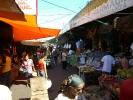 Petirossi-Markt13.jpg