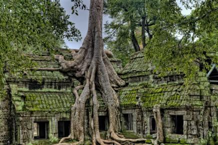 camboya oficina consular
