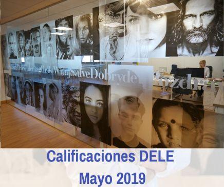 DELE mayo 2019