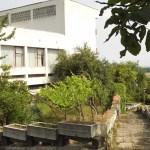 Прокурори влизат в старческите домове и социалните институции в Силистренско