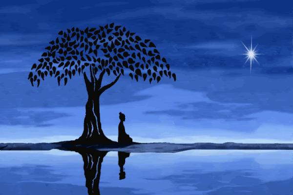 BuddhaMeditationTree