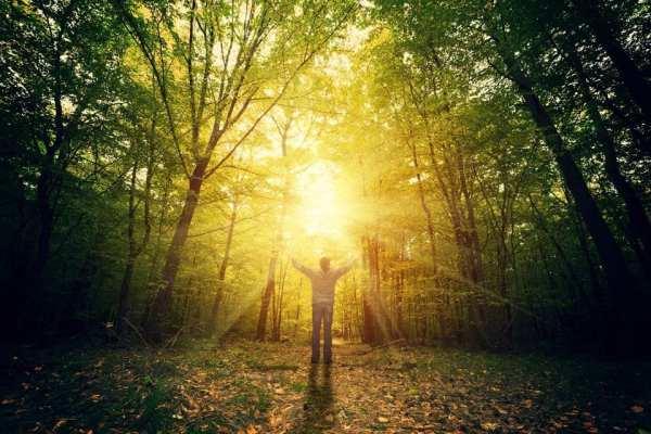 light-sun-shaman