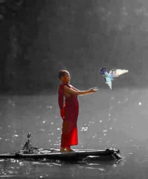 shaman-recapitulation