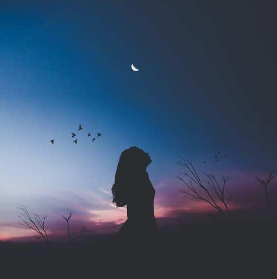 dreaming-awake-toltec